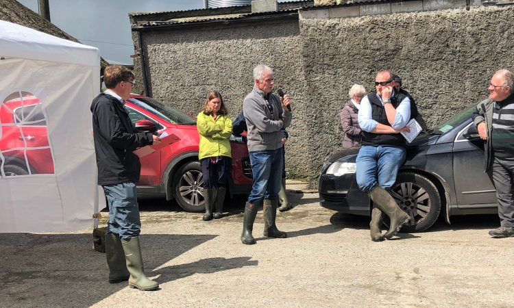 Dairy focus: Farming 'outside of the norm' in Co. Limerick