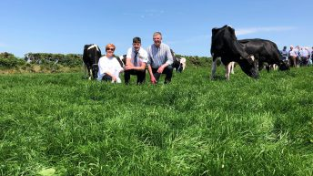 Dairy focus: Started from the bottom, now they're here in Co. Cork