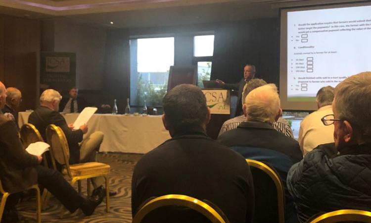 ICSA beef fund meeting debates suckler payments