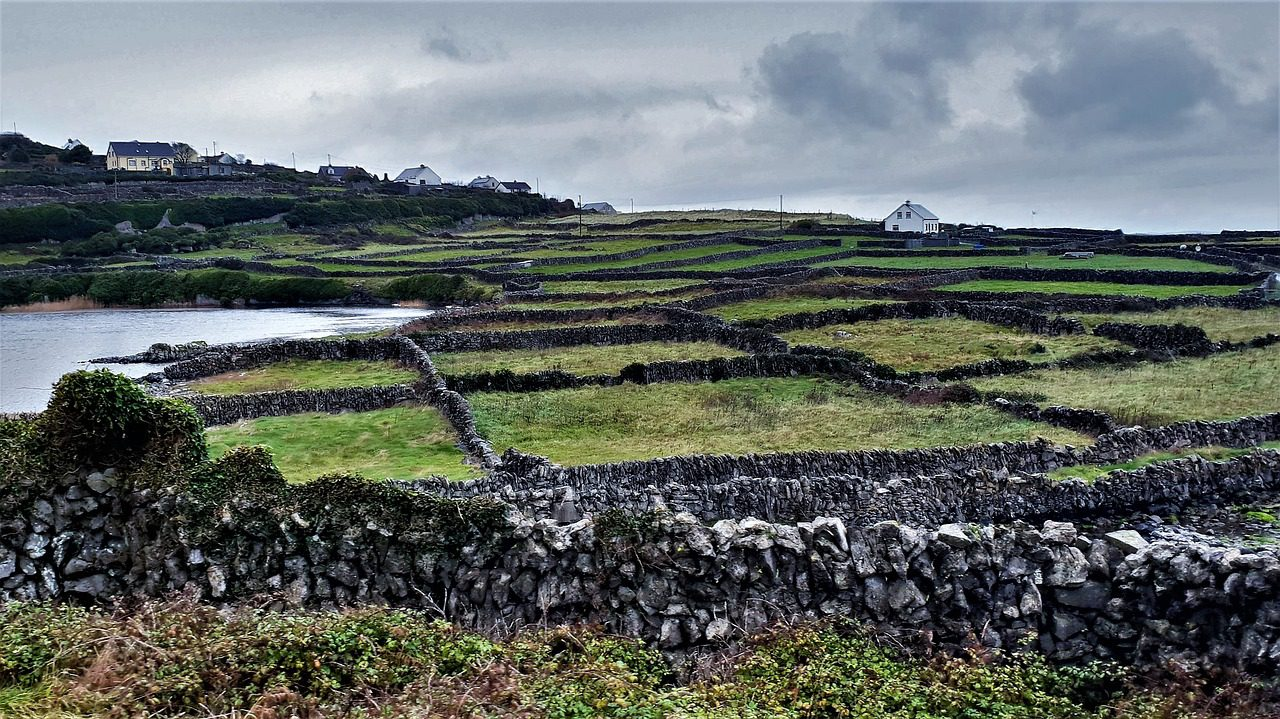 Government launches new 5-year plan for rural Ireland