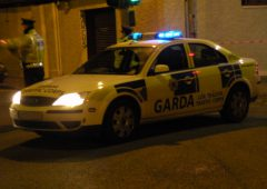 2 elderly men found dead at Cork farm