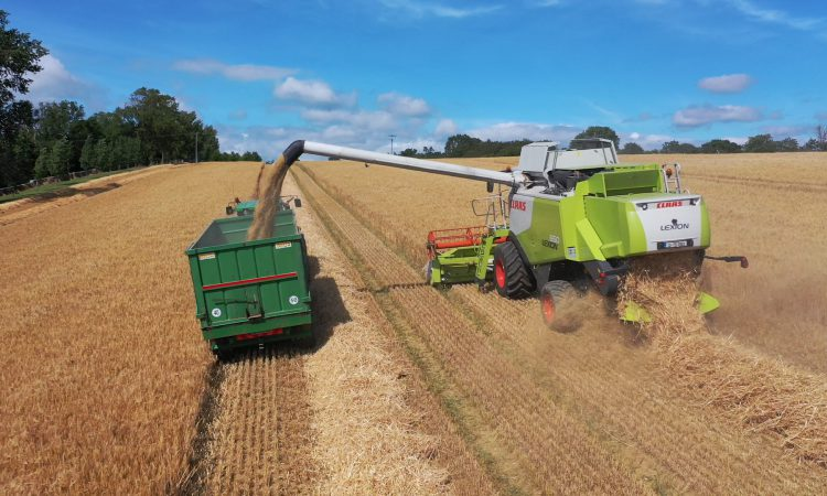Watch: Harvest in full swing in south Tipperary