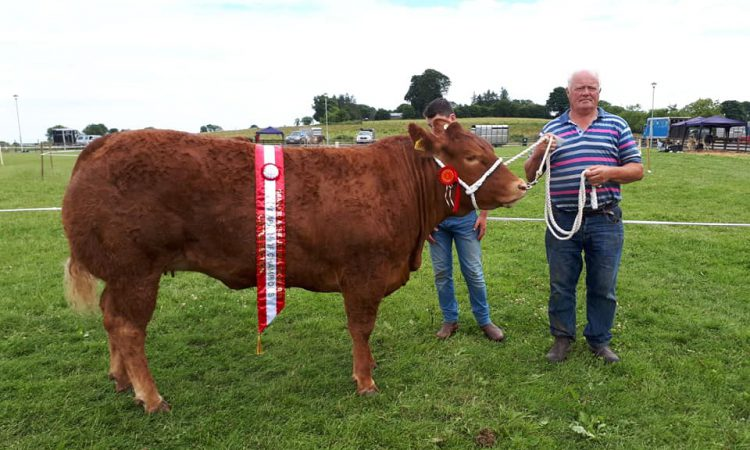 Granard Show works to make a name for itself