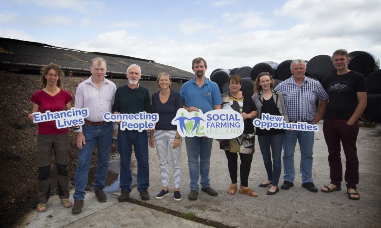 'Ordinary Irish working farms support people with disabilities'