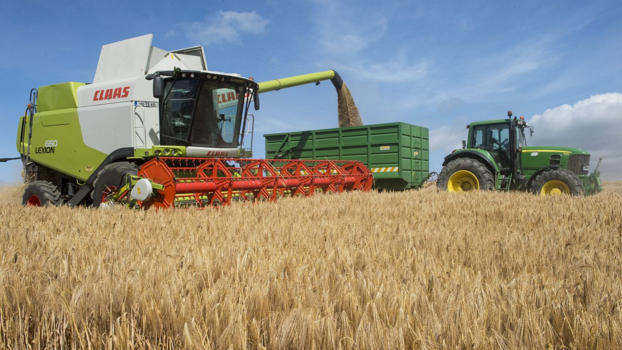 Harvest update: Quality improving as time goes on