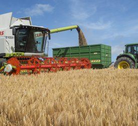 Glanbia grain price 'positive for tillage sector'