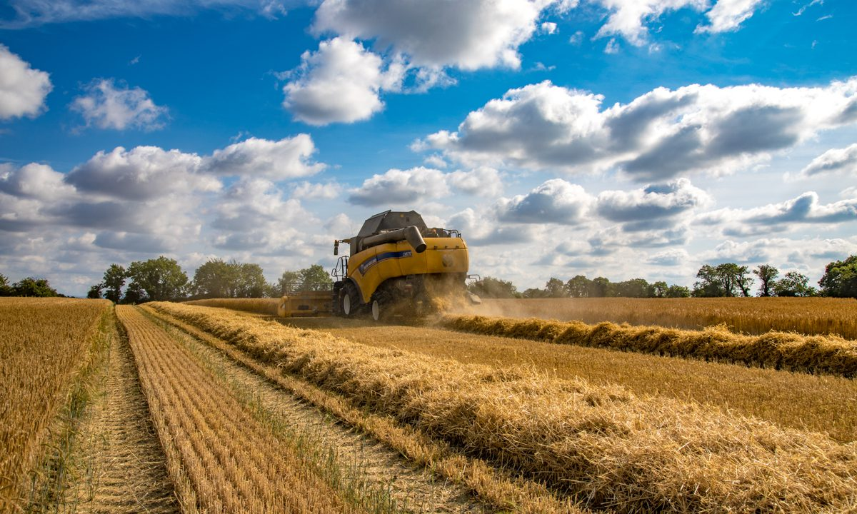 Unsettled weather looms: Will combines get going again this week?