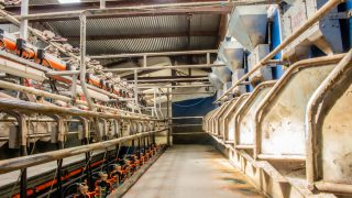 Milk prices: 'Low and slow' feel 'making suppliers suspicious'