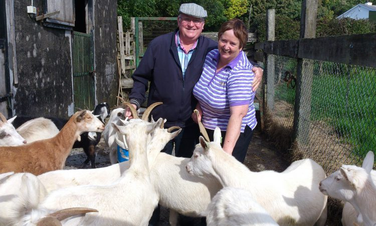 Westmeath couple reared over 1,000 goats for Bóthar