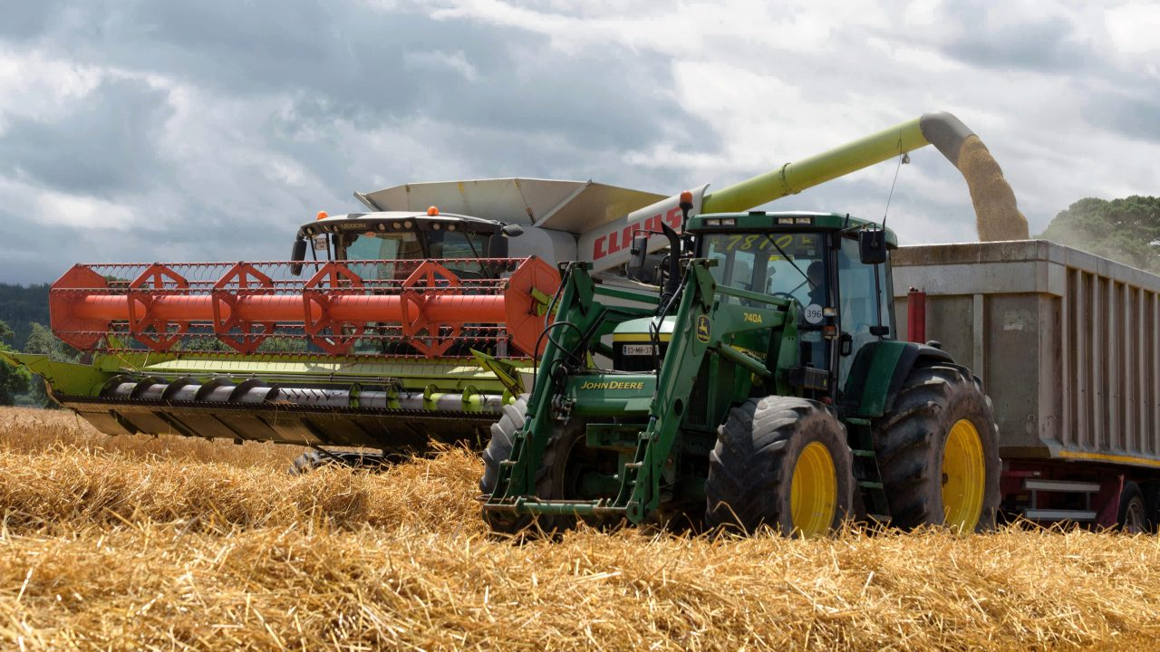'Grain growers need a strong price' – IFA