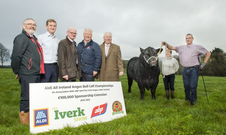 €27,000 prize fund at the 2019 Angus Bull Calf Championship