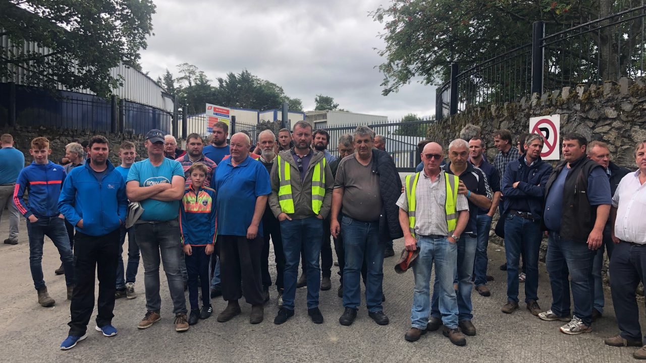 Rural TDs call for Government intervention for beef sector