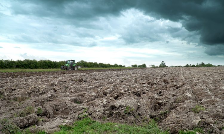 Video: Getting the plough out in Co. Roscommon