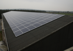 First RESS auction expected to deliver 30% rise in renewables