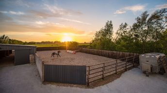 'Rare' residential property for sale with equine facilities and an American-style barn