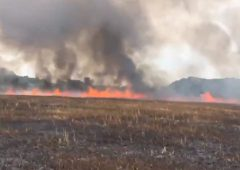 35ac of barley up in smoke due to suspected rubbish burning in Suffolk