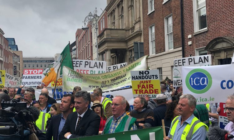 Beef Plan stages protest outside Dáil over 'attack' on rural Ireland