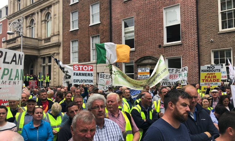 Watch: Farm bodies unite for Beef Plan protest in Dublin