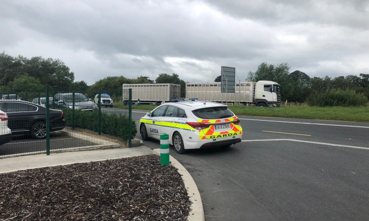 Livestock lorries delayed at ABP Nenagh