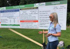 草三叶草草草群每年可能带来305欧元/公顷的额外净利润。