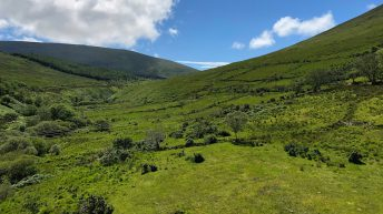 'Climate of distrust' between Kerry County Council and landowners