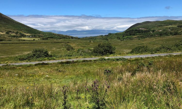 Counties affected by peat-cutting suspension will receive funding for greenways