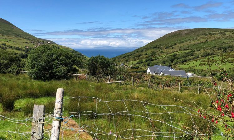 South Kerry Greenway: Agronomist appointed to deal with fallout