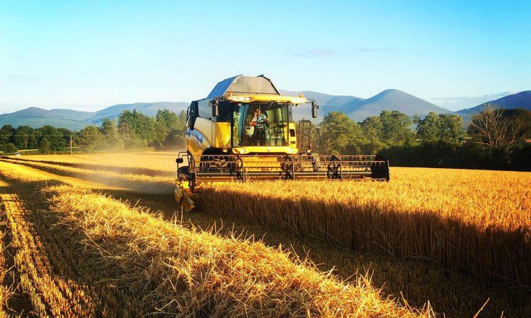 Latest harvest pics as rain results in break