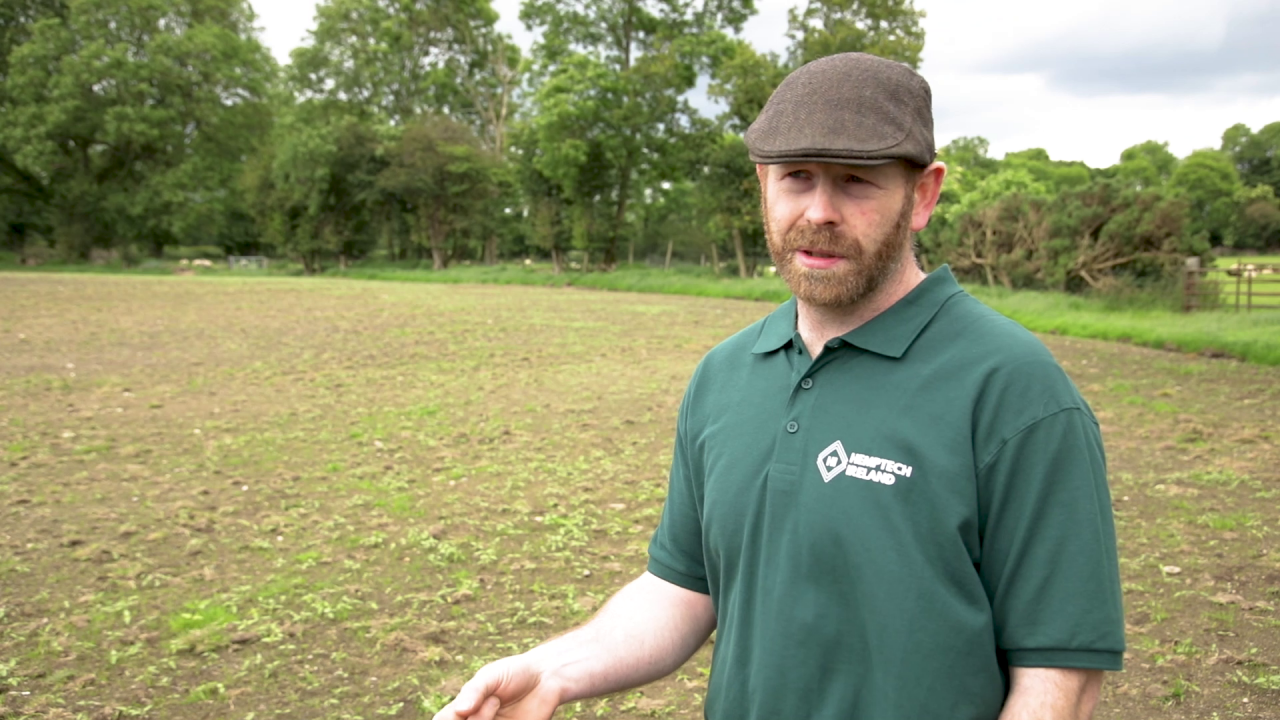 Tillage focus: Growing and harvesting a 40ac hemp crop in Co. Wicklow