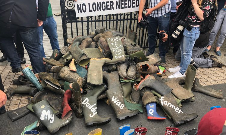 Fuming farmers pile 'redundant wellies' at gates of Leinster House
