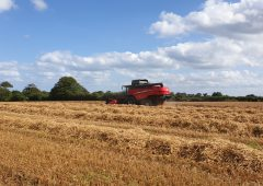 Combine harvesting: How much does it cost?