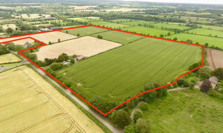 Video: 41ac residential farm in the 'royal county' to go for auction in lots
