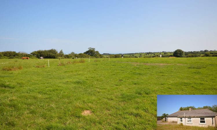 19ac Kilmuckridge residential farm with outbuildings for sale