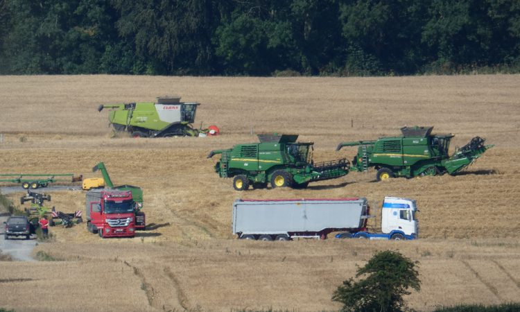 Harvest pics: Heavy rain halts activity