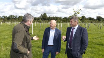 Doyle highlights role of agroforestry on Irish farms