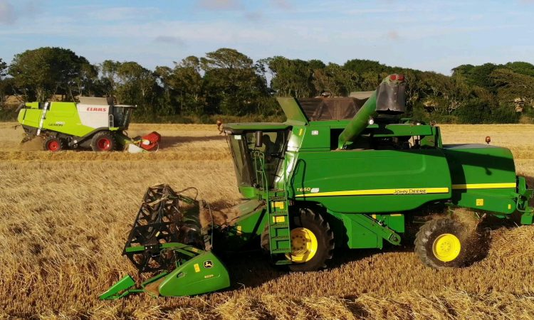 Facts and figures: The Irish tillage sector in 2019