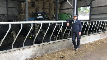 Making adjustments and moving away from Friesian bulls in Co. Cork
