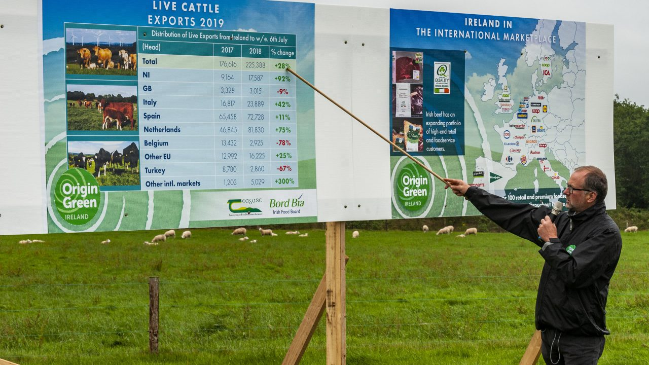 Series of beef and sheep farm walks to begin this autumn
