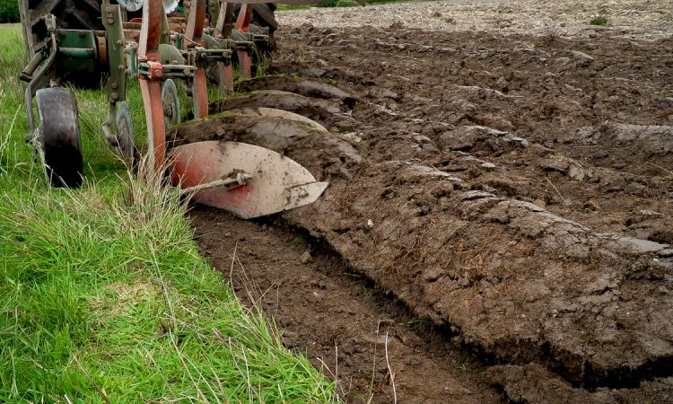 'Ploughing' not to go ahead behind closed doors