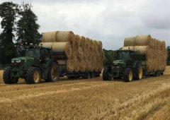 Straw price meets floor as demand comes with wet weather