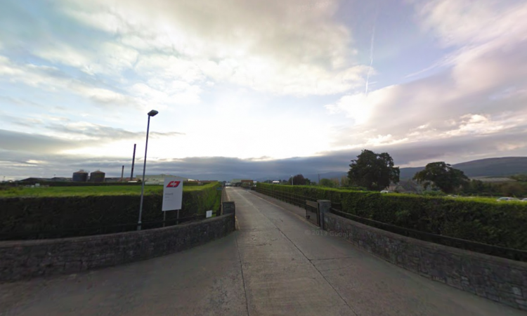 ABP lays off 355 people at Cahir plant