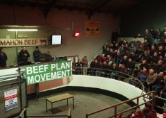 Beef Plan contacts 3 UK retailers to arrange meetings