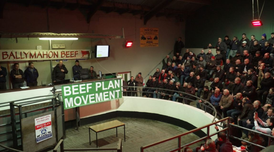'We cannot and will not condone illegal blockading of meat plants' – Beef Plan