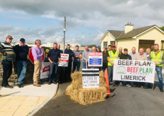 'The reforms we asked for have not been delivered' – Beef Plan