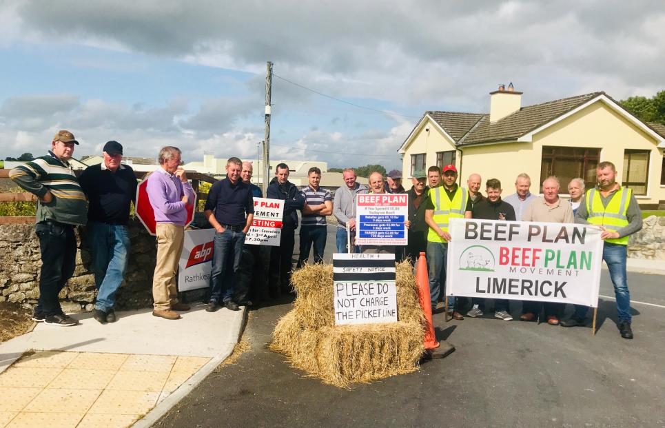 'Every dairy farmer is needed here' – Beef Plan plea