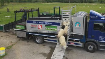On the road…with a mobile sheep dipping rig