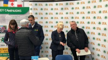 Farmers buying dairy calves to benefit from beef talks – Healy
