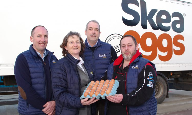 How this Co. Tyrone poultry farmer achieved a significant increase in egg production