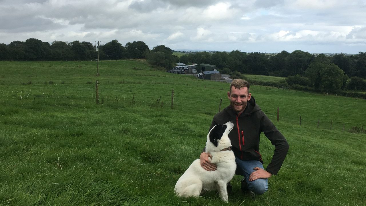 Sheep focus: Breeding from within…to reduce costs and disease