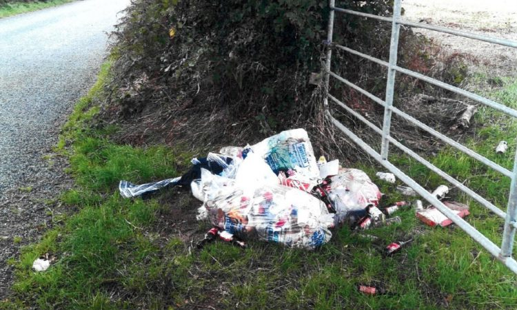 Fly-tipper 'stung' with fine in 'sunny south-east'